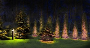 Декоративное ландшафтное  освещение